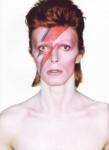 Ziggy-ziggy-stardust-27991406-500-689